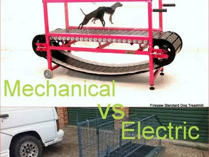 Are electric treadmills better for conditioning and rehabilitation than mechanical dog treadmills